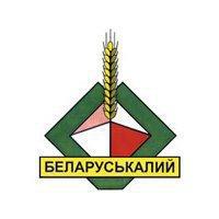 Беларуськалий может быть куплен