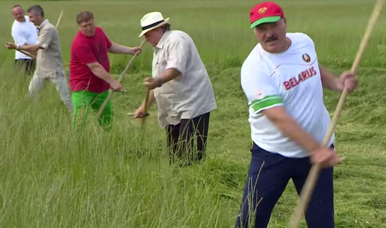 Косит траву